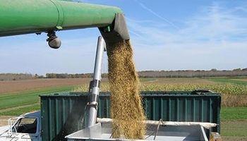 Interna oficial por el precio de los granos