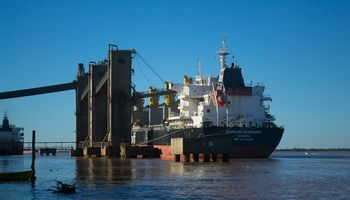 Cargill y Cofco pelean el primer puesto del ranking de exportaciones agrícolas