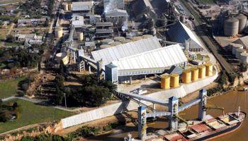 Exportadores de granos ya suman US$ 1700 millones en inversiones
