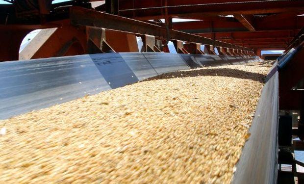 Proponen una serie de medidas para mejorar la situación actual del sector Agroindustrial Pyme que produce expeller y harina de soja en Argentina.