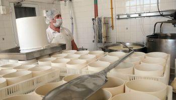 Precios atrasados y adaptación a la pandemia: cuál es la actualidad de las pymes lácteas