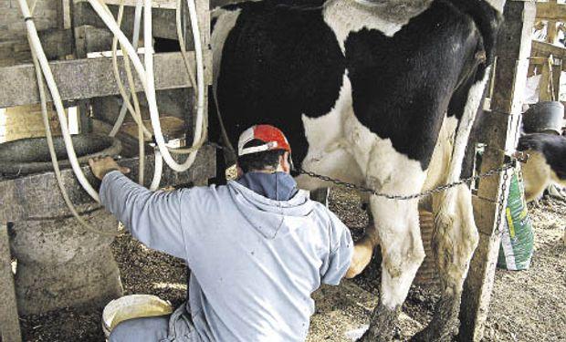 Lácteos: críticas de los tamberos a Capitanich