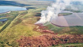 Nación presentó una propuesta para erradicar la quema de pastizales en el Delta del Paraná