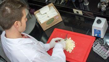 Presentan queso funcional que ayudaría a reducir el colesterol