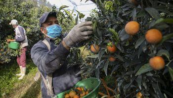Del sur al mundo: un foro para debatir el futuro de los sistemas agroalimentarios