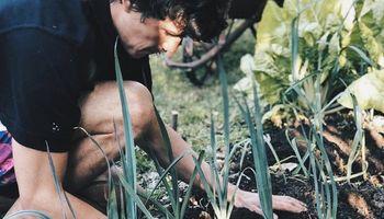 Agro en casa: estudia Agronomía, comparte experiencias y recolectó miles de seguidores que no son del campo