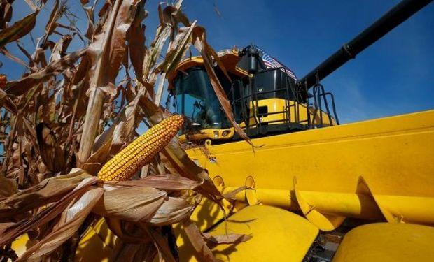El USDA proyectó un rango de precios promedio para el maíz de 120,07 a 143,69 dólares por tonelada en la campaña 2016/17.