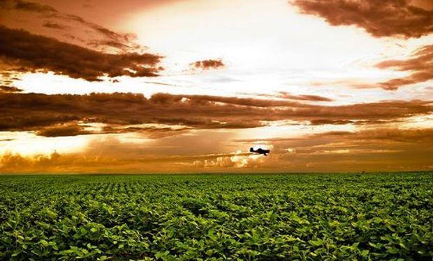 Provincias reeditan pedido para libre uso de fondo sojero