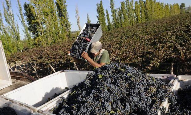 Representantes de 18 cámaras y asociaciones de la vitivinicultura lanzaron la convocatoria, a pocos días del comienzo de la cosecha 2015.