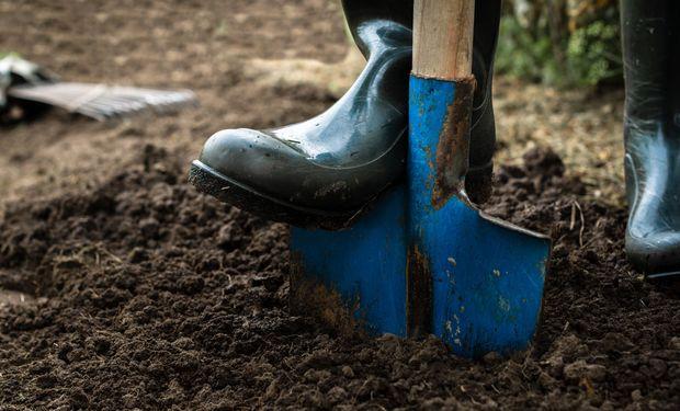 Los 6 pasos para un correcto muestreo de suelos
