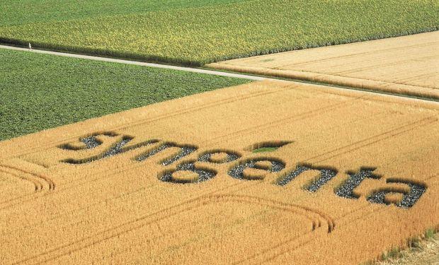 Syngenta invita a las instituciones interesadas en la temática a presentar propuestas creativas enfocados en la recuperación de más tierras para cultivos. Foto: Agroagencia.