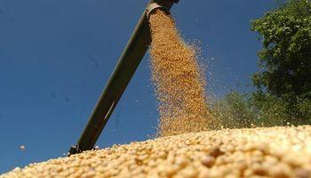 Bayer insistirá en el cobro de regalías en soja en el país