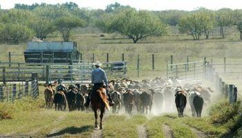 Tareas rurales  y examen preocupacional: pautas a tener en cuenta
