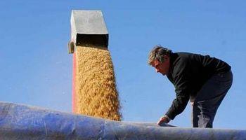 Régimen jubilatorio de los trabajadores rurales