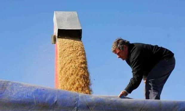 Este régimen les permite a los trabajadores de la actividad rural jubilarse anticipadamente.