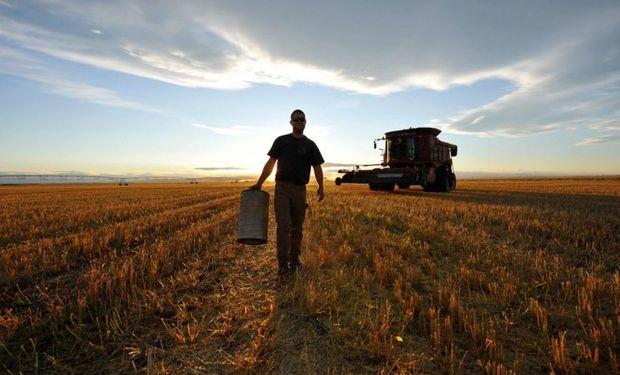 Régimen de Trabajo Agrario: fuentes de regulación y de obligaciones o relaciones jurídicas.