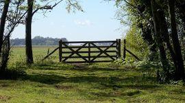 Paso a paso, cómo registrar un contrato de alquiler en la AFIP: están incluidos los arrendamientos rurales