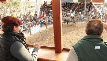 Remataron equinos por más de $2 millones
