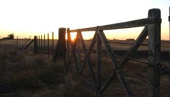 Río Negro: suspenden el remate a un pequeño productor