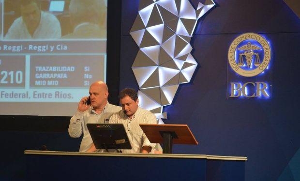 Rosgan vende 13.833 cabezas desde la Bolsa de Comercio de Rosario.