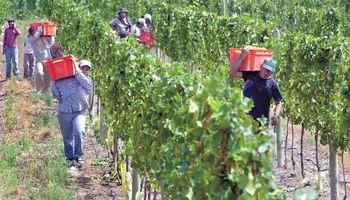 Implementan el sistema PASAR para que trabajadores golondrinas viajen a San Juan