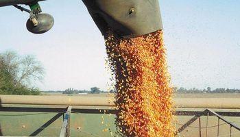 Participación del Estado sobre la renta agrícola se ubica en niveles de 2014