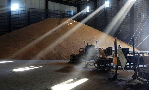 Reservas secretas: qué se sabe de los stocks de granos y carne que acumula China