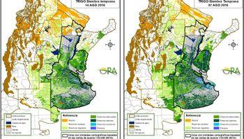 El trigo y las reservas de humedad siguen siendo aliados