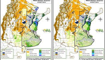 Excesos hídricos podrían impactar en lotes de maíz