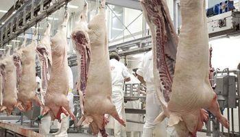 El sector porcino pide no suspender los frigoríficos ante un caso de coronavirus