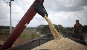 La retención efectiva vigente en trigo superó el 50%