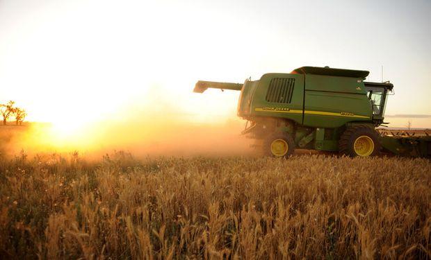 Compensación económica a los agricultores de hasta un total acumulado de 700 toneladas de trigo, soja, maíz o girasol.