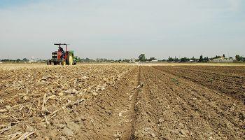 Lento avance para la siembra de soja en Brasil