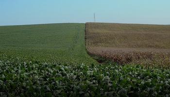 En Brasil los productores ya prueban el 5G