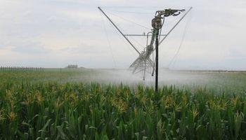 Argentina puede sumar 6,9 millones de hectáreas bajo riego
