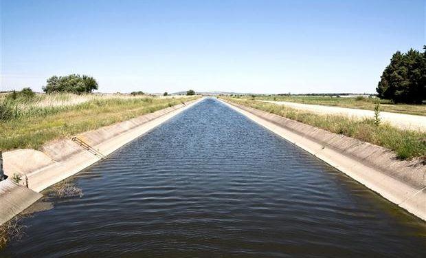 Argentina tiene un potencial de riego de 4,5 millones de ha. y la expansión de las áreas de riego abarcaría a 17 provincias. Foto: Shutterstock