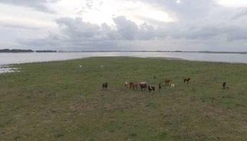 El río Salado está al límite y complica a más localidades