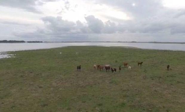 El vuelo de un drone muestra la emergencia que se vive en ese distrito bonaerense.