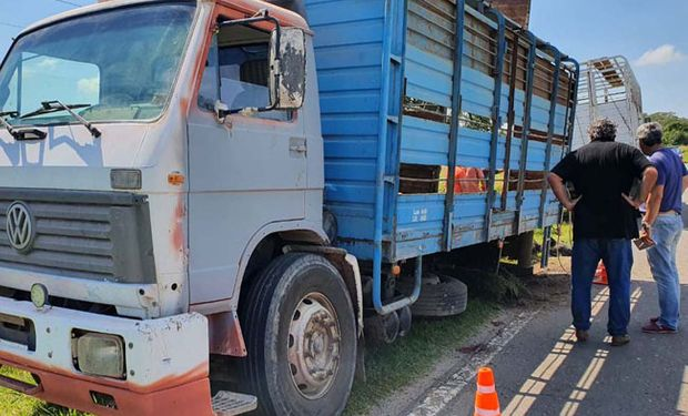 Le robaron un camión con ganado y lo encuentra abandonado en la ruta