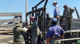 Robo del siglo: detienen a un exdiputado santafesino y otras dos personas por el robo de 2 mil cabezas de ganado