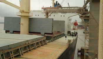 Trigo: emitieron permisos de exportación luego de un año y medio