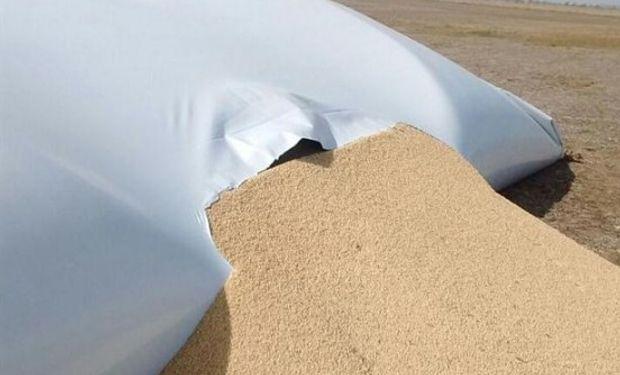 Uno de los silobolsas rotos. Foto: Gentileza FAA Huinca Renancó