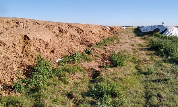 Perdió más de 2 millones de pesos: en Santa Fe, le arruinaron 500 metros de silo bolsas con alimento para animales