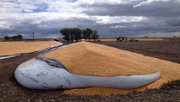Entidades rurales se manifestaron contra una nueva rotura de silo bolsas