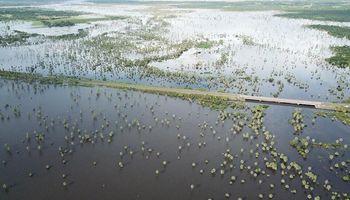 Bajos submeridionales: senadores aprobaron la creación de un comité para preservar los recursos naturales
