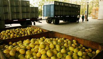 Durante 2018 creció un 7% la cantidad de productores orgánicos en Argentina