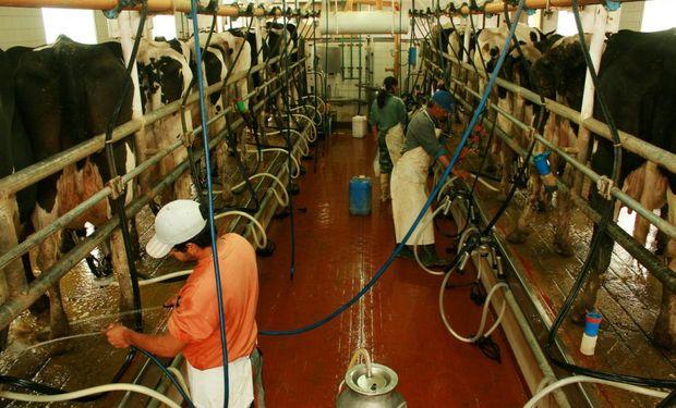 El mercado mundial lácteo atraviesa una recuperación en la producción, pero los costos suben