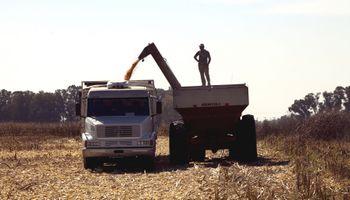 Cuántos insumos se compran con los precios actuales de la soja, el maíz y el trigo