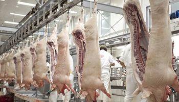 Basterra confirmó que ya se trabaja en la exportación de subproductos porcinos a China