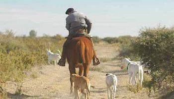 Incremento salarial para privados: cuál es la situación de los trabajadores rurales